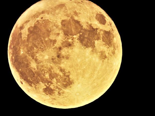 満月 (2)