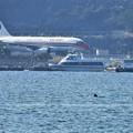 Photos: ターミナルへ