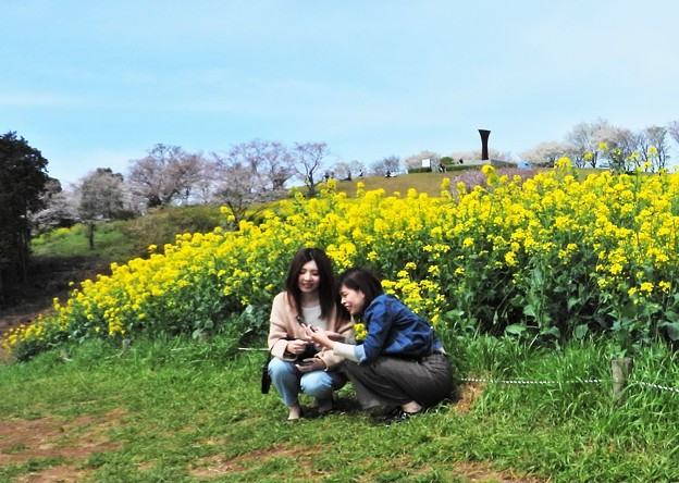 Photos: 私も花見