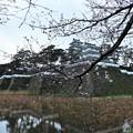 Photos: 雨の島原城