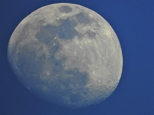 青い月夜の十三夜