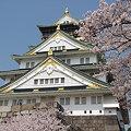 桜の季節の大阪城♪