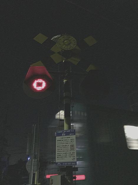 桜井(万葉まほろば)_金谷_2