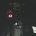写真: 桜井(万葉まほろば)_金谷_2