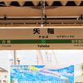 Photos: OI000004