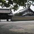 Photos: 村崎一徳_京都東寺IMG_2675