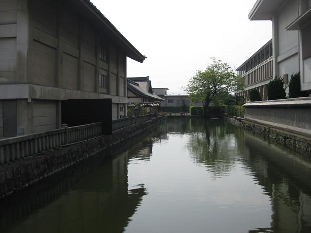村崎一徳_京都東寺IMG_2682