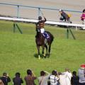 キタサンブラック&武豊騎手 勝利に喜ぶ人馬