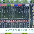 Photos: 2017年の日本ダービー出走馬達