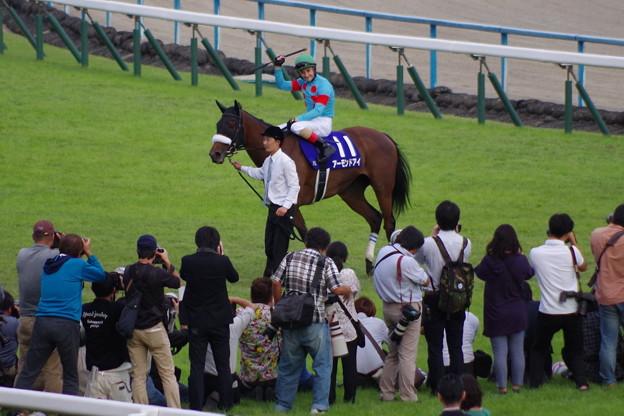 アーモンドアイ 完勝で牝馬クラシック3冠達成!