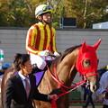 Photos: ノンコノユメ