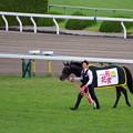 Photos: 菊花賞馬 ワールドプレミア号