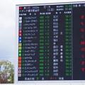 Photos: 競馬始め!京都金杯!