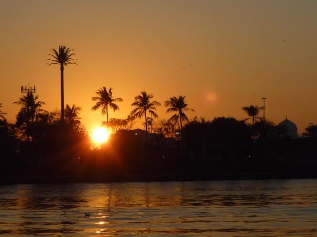 写真: アラブの残照,UAE  Sunset viewing