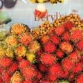写真: ランブータン~マレーシア Exotic Fruit Rambutan