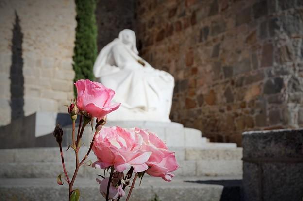 聖テレサに捧げる薔薇~スペイン Gate Alcazar