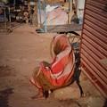 Photos: 不安な日々~インド Indian Old Woman