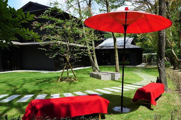 木漏れ日の林泉~瑜伽山園地 Yugayama Garden