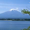 写真: 5月の富士山