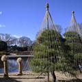 公園の冬風景