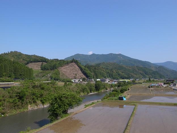 写真: 水田