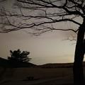 夜の曽爾高原