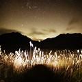 Photos: 夜の砥峰高原