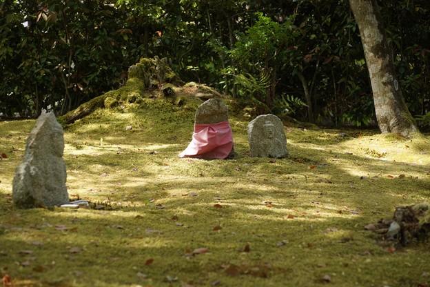 Photos: 念仏寺