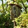 Photos: 祇王寺