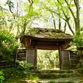 写真: 祇王寺 2