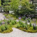 写真: 平安の庭