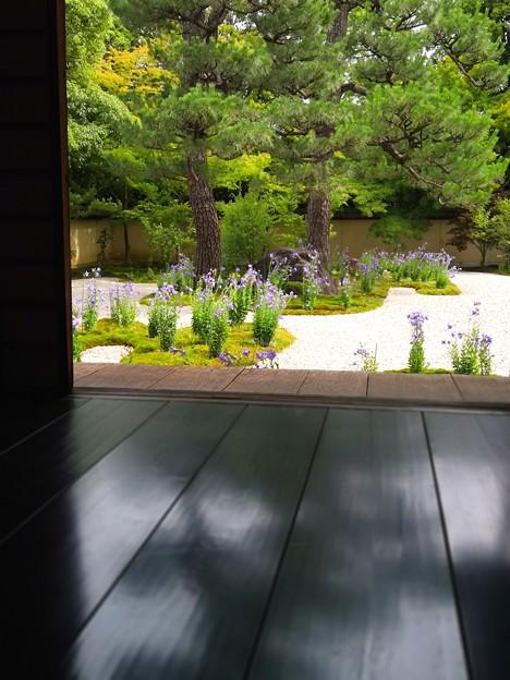 Photos: 平安の庭 3
