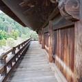 Photos: 南禅寺 三門 3