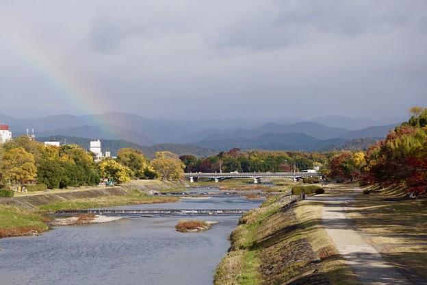 晩秋の鴨川