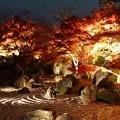 Photos: 青龍殿 2