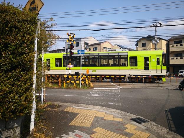 Photos: 叡電