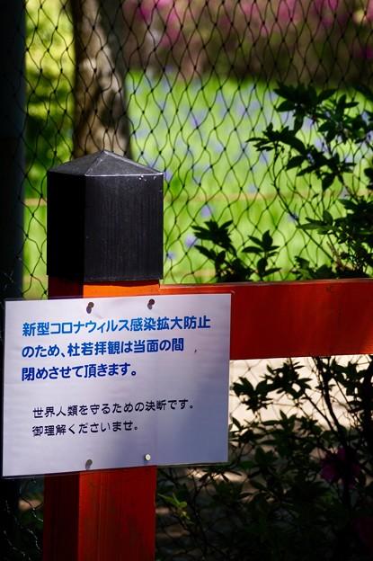 大田神社「決断」