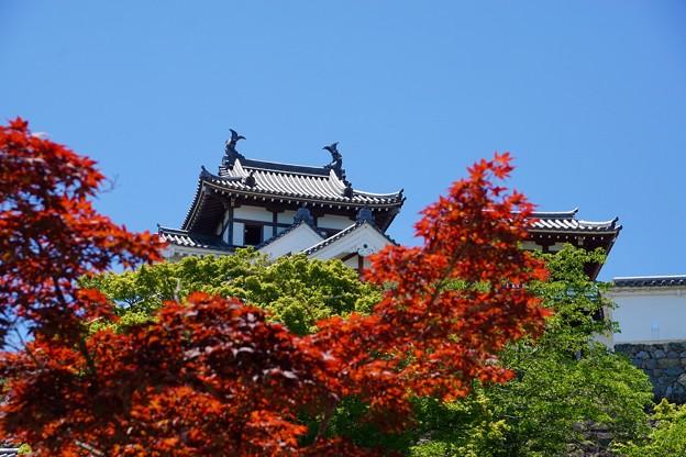 福知山城 2