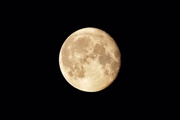 Photos: お月さま