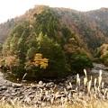唐戸の渓谷