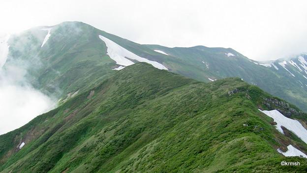 雨上がりの山稜