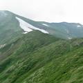 Photos: 雨上がりの山稜