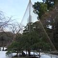 写真: 小石川後楽園