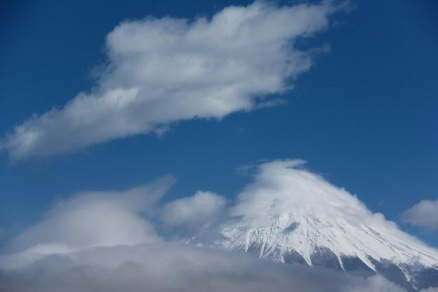 写真: 3月1日富士宮からの富士山~ 見えてきました(^ ^)