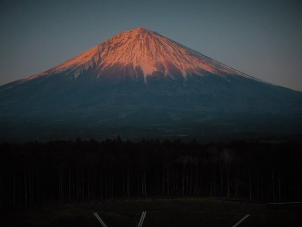 2019/4/4・・・今日の夕刻No.01