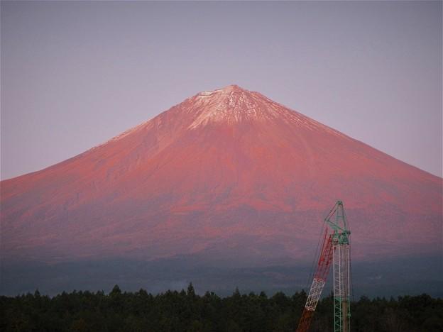 Photos: 2019/11/01・・・夕