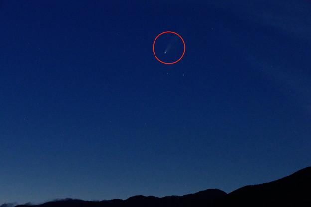 Photos: 2020/07/19・・・ネオワイズ彗星No02