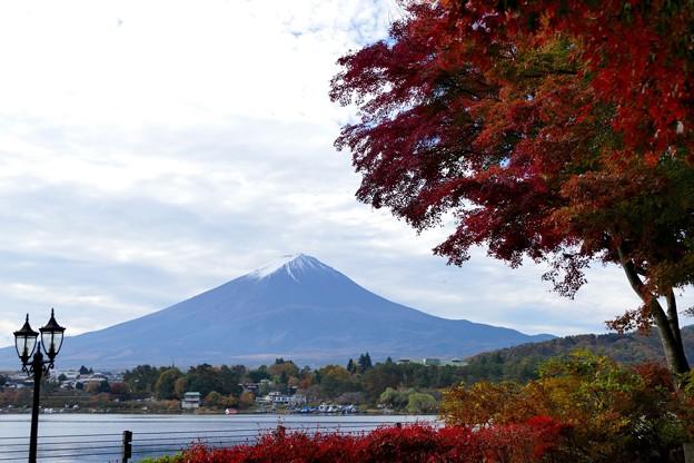 2020/11/08・・・富士五湖の紅葉No04