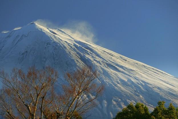 2020/11/27…雪景色No01