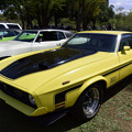 1972 Ford Mustang Mach 1 08042018